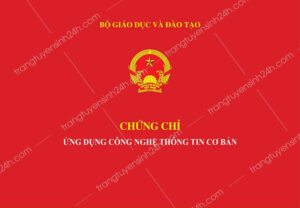 o-dau-cap-chung-chi-tin-hoc-co-ban-cong-nhan-toan-quoc